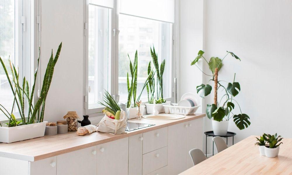 Eco-friendly kitchen ideas DreamZone Hazratganj
